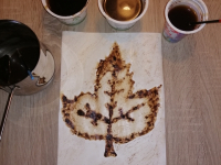 lina_8_kava